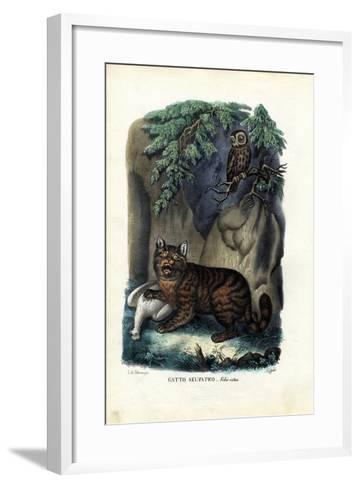 Wildcat, 1863-79-Raimundo Petraroja-Framed Art Print