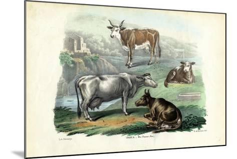 Cattle, 1863-79-Raimundo Petraroja-Mounted Giclee Print