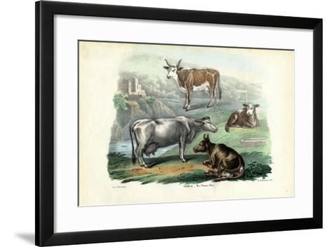 Cattle, 1863-79-Raimundo Petraroja-Framed Art Print