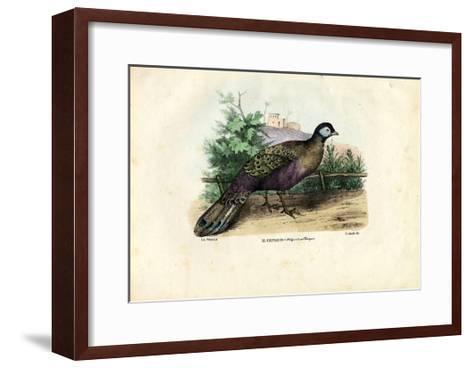 Indian Peafowl, 1863-79-Raimundo Petraroja-Framed Art Print