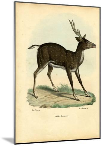 Axis Deer, 1863-79-Raimundo Petraroja-Mounted Giclee Print