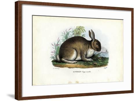 Rabbit, 1863-79-Raimundo Petraroja-Framed Art Print