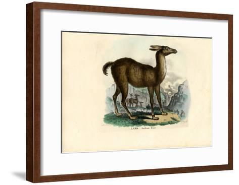 Llama, 1863-79-Raimundo Petraroja-Framed Art Print