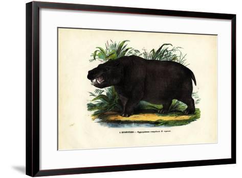 Hippo, 1863-79-Raimundo Petraroja-Framed Art Print