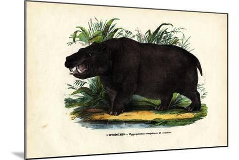 Hippo, 1863-79-Raimundo Petraroja-Mounted Giclee Print