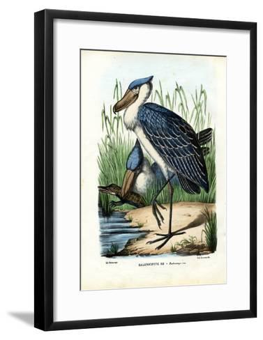 Whalehead, 1863-79-Raimundo Petraroja-Framed Art Print