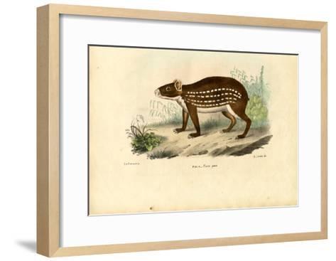 Paca, 1863-79-Raimundo Petraroja-Framed Art Print