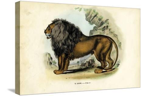 Lion, 1863-79-Raimundo Petraroja-Stretched Canvas Print
