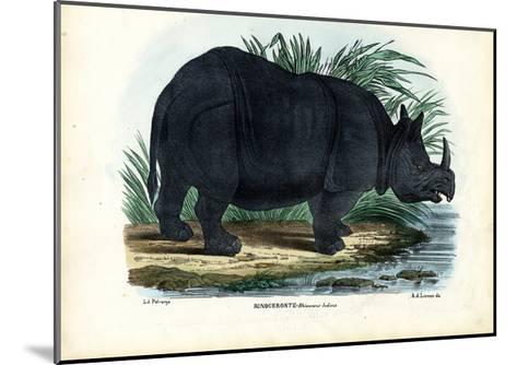 Greater One-Horned Rhinoceros, 1863-79-Raimundo Petraroja-Mounted Giclee Print