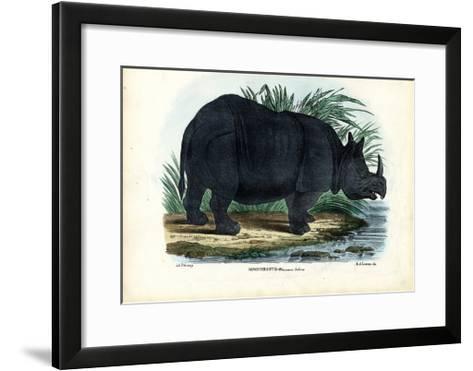 Greater One-Horned Rhinoceros, 1863-79-Raimundo Petraroja-Framed Art Print