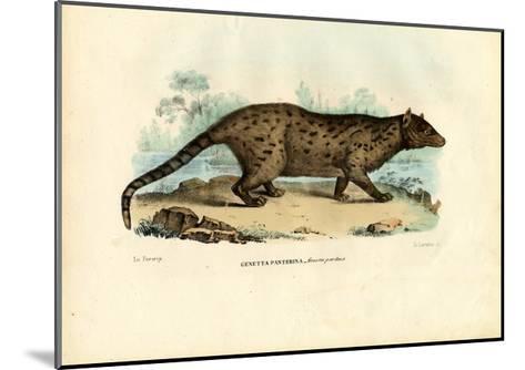 Pardine Genet, 1863-79-Raimundo Petraroja-Mounted Giclee Print