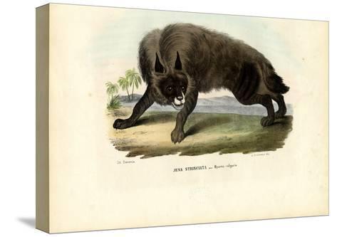 Striped Hyena, 1863-79-Raimundo Petraroja-Stretched Canvas Print