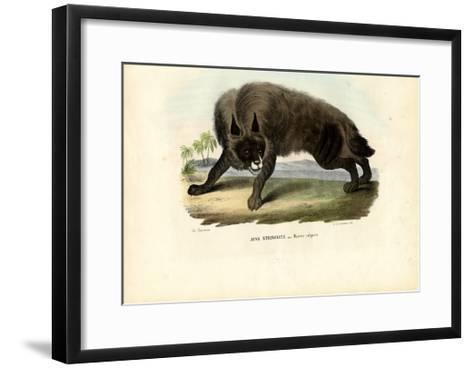 Striped Hyena, 1863-79-Raimundo Petraroja-Framed Art Print