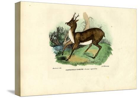 Roe Deer, 1863-79-Raimundo Petraroja-Stretched Canvas Print