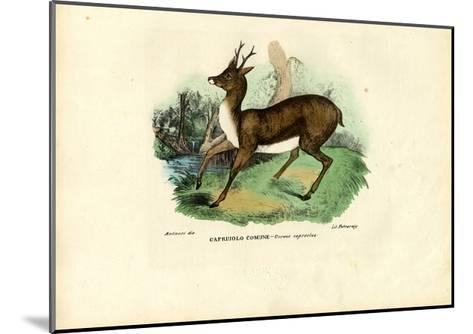 Roe Deer, 1863-79-Raimundo Petraroja-Mounted Giclee Print