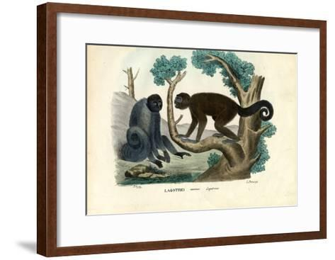 Woolly Monkey, 1863-79-Raimundo Petraroja-Framed Art Print