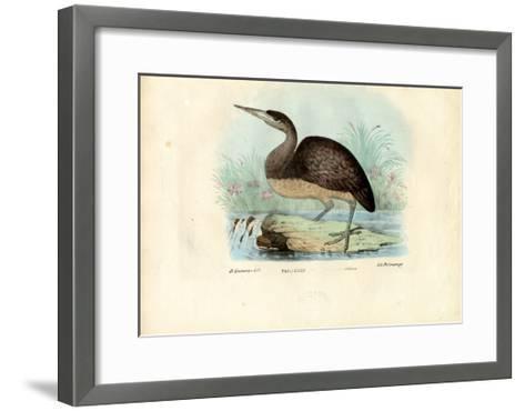 Bittern, 1863-79-Raimundo Petraroja-Framed Art Print