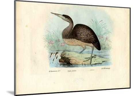 Bittern, 1863-79-Raimundo Petraroja-Mounted Giclee Print