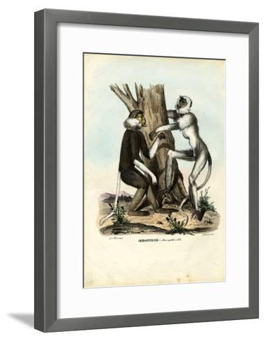 Langurs, 1863-79-Raimundo Petraroja-Framed Art Print