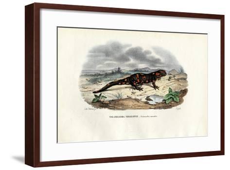 Fire Salamander, 1863-79-Raimundo Petraroja-Framed Art Print