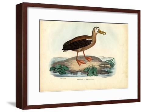 Wandering Albatross, 1863-79-Raimundo Petraroja-Framed Art Print