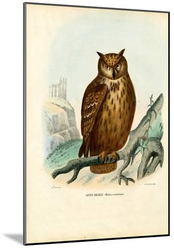 Eurasian Eagle Owl, 1863-79-Raimundo Petraroja-Mounted Giclee Print