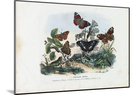 Butterflies, 1863-79-Raimundo Petraroja-Mounted Giclee Print