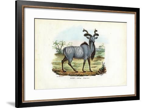 Greater Kudu, 1863-79-Raimundo Petraroja-Framed Art Print