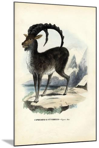 Alpine Ibex, 1863-79-Raimundo Petraroja-Mounted Giclee Print