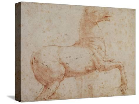 Study of One of the Quirinal Marble Horses, C.1515-17-Raphael-Stretched Canvas Print