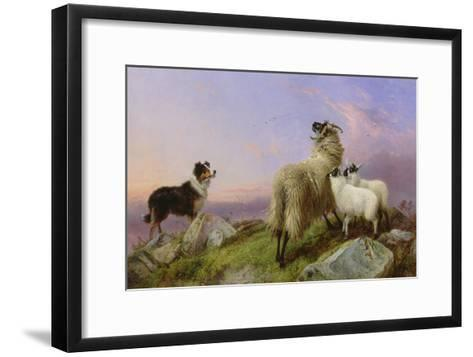 Collie, Ewe and Lambs-Richard Ansdell-Framed Art Print