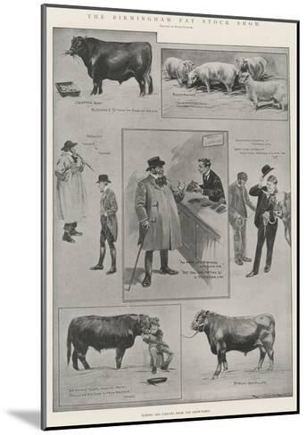 The Birmingham Fat Stock Show-Ralph Cleaver-Mounted Giclee Print