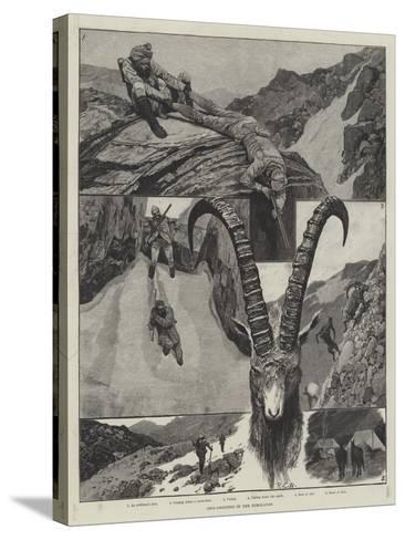 Ibex-Shooting in the Himalayas-Richard Caton Woodville II-Stretched Canvas Print