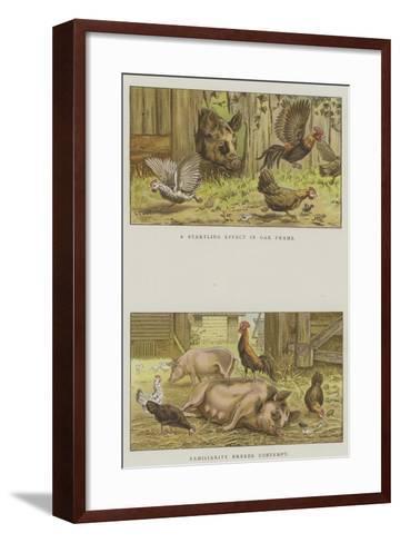 Farmyard Scenes-S^t^ Dadd-Framed Art Print