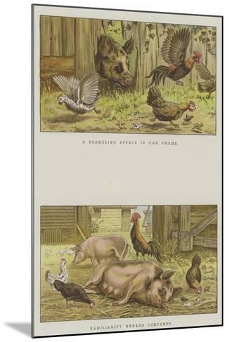 Farmyard Scenes-S^t^ Dadd-Mounted Giclee Print