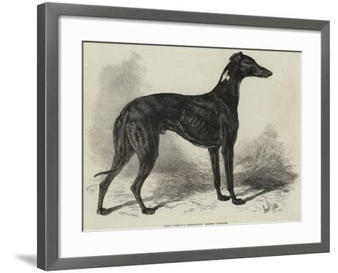 Lord Lurgan's Greyhound, Master M'Grath-Samuel John Carter-Framed Art Print