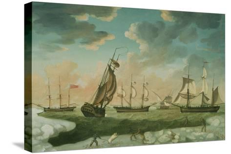Arctic Scene-Robert Willoughby-Stretched Canvas Print