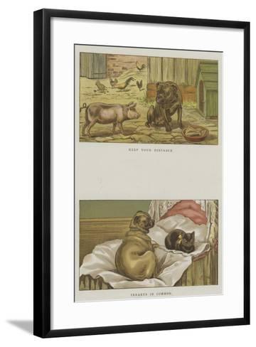 Humorous Dogs-S^t^ Dadd-Framed Art Print
