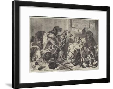 Home for Lost and Starving Dogs, Hollingsworth-Street, Islington-Samuel John Carter-Framed Art Print