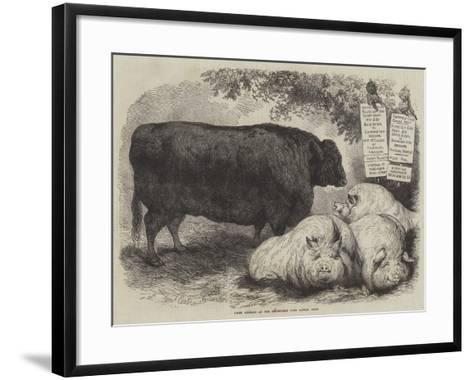 Prize Animals at the Smithfield Club Cattle Show-Samuel John Carter-Framed Art Print