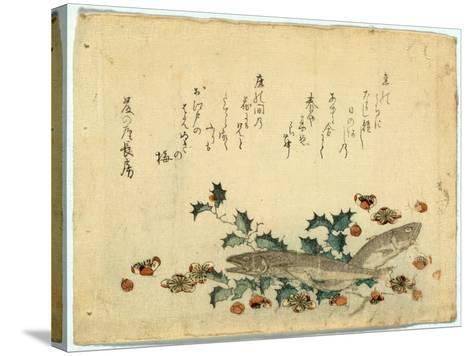 Hiiragi Ni Iwashi Ni Ume-Ryuryukyo Shinsai-Stretched Canvas Print