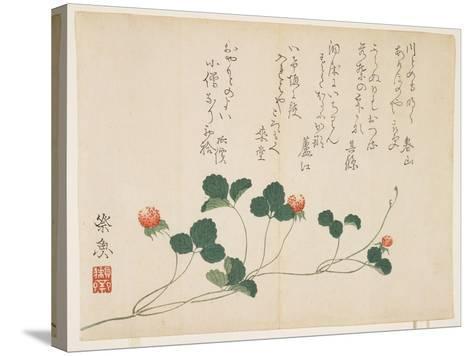 Raspberries- Saigyo-Stretched Canvas Print