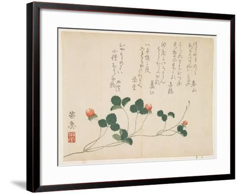 Raspberries- Saigyo-Framed Art Print