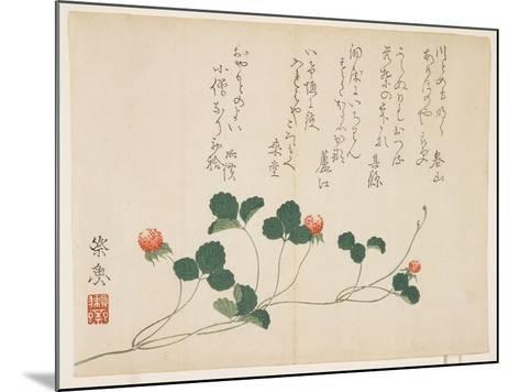 Raspberries- Saigyo-Mounted Giclee Print
