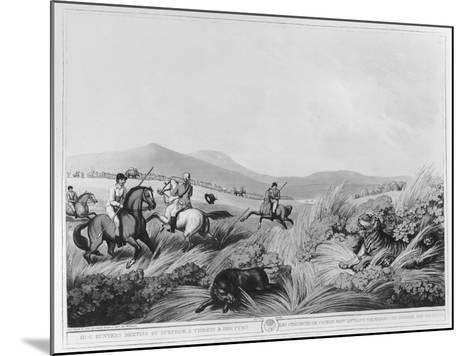 Hog Hunters Meeting-Samuel Howett-Mounted Giclee Print