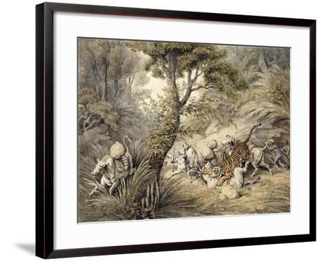 Tiger Attacking a Cattle Train-Samuel Howitt-Framed Art Print