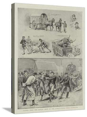 Scenes from the Cattle Show at the Agricultural Hall, Islington-S^t^ Dadd-Stretched Canvas Print