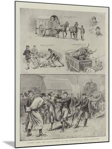 Scenes from the Cattle Show at the Agricultural Hall, Islington-S^t^ Dadd-Mounted Giclee Print