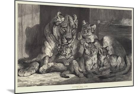 Lioness and Cubs-Samuel John Carter-Mounted Giclee Print
