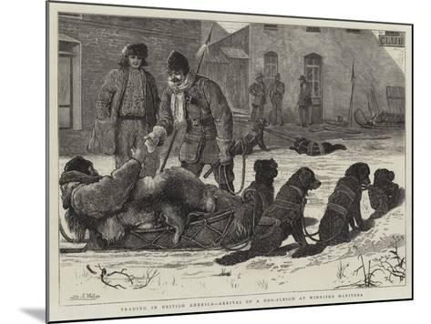 Trading in British America, Arrival of a Dog-Sleigh at Winnipeg Manitoba-Samuel Edmund Waller-Mounted Giclee Print